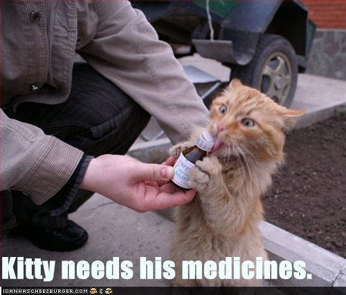 Curiosidades Y Bromas. Funny-pictures-cat-needs-his-medicine2